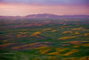 Palouse Sunrise from Steptoe Butte, Washington