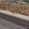 Western Leucadia's sandy soil meets the tracks