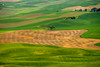 Palouse Dreams<br /> Steptoe Butte<br /> Washington<br /> © 2014