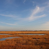 Winter saltmarshes