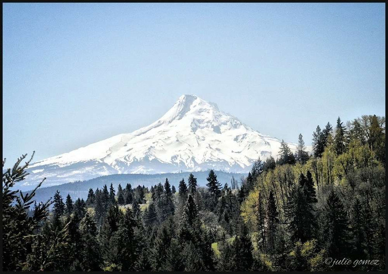 Mount Hood's North Face