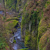 Moss Covered Canyon Walls Along Multnomah Creek. Columbia River Gorge Oregon