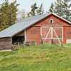One of the many old barns out in the Palouse.