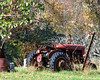 Tractor on a fall day-1