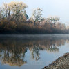 American River Parkway near Cal Expo, Sacramento Co, CA, 12-7-13. 8 image photomerge.