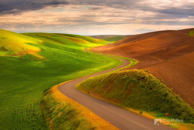 Road to the Palouse