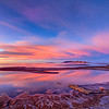 the shore of the Great Salt Lake