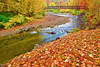 Vermont, Stowe, Foliage, Fall Colors, Landscape, 佛蒙特, 秋色 风景