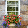 Window Flower Box; Vermont