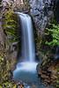 Christine Falls, Rainier National Park
