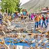 Antler auction and sale, Jackson, Wyoming.