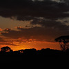Sunrise in Amboseli National Park, Kenya, East Africa