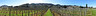 Vineyards of Cornas Pano