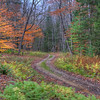 Two Track Road in the Adirondacks, Upstate New York