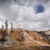 Mammoth Hot Springs, Yellowstone Ntl Park