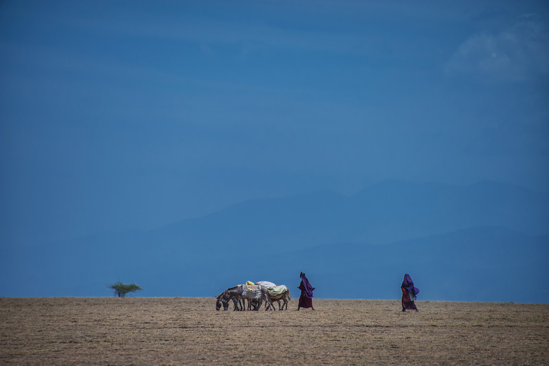 Masai Traveling Across Dried Up Riverbed, Amboseli, Kenya