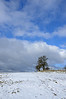 Waseley Snow LR_022