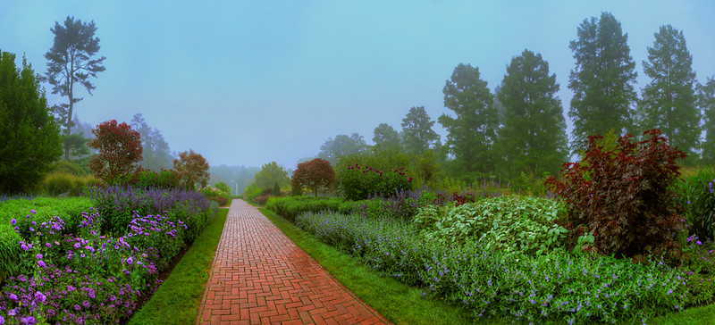 Longwood-foggy-sept-morning-Panorama1e