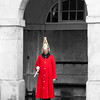 Household Guard at Horseguards Parade in London, England