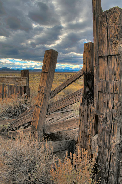 Weathered wooden fence, evening