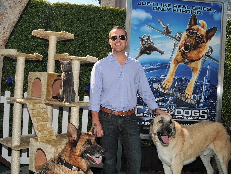 """Cats & Dogs: The Revenge Of Kitty Galore"" - Los Angeles Premiere"