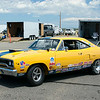 Yellow Roadrunner