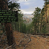 Near Lover's Leap in Custer State Park