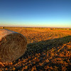 Evening sun shining on a hay bale east of Pierre