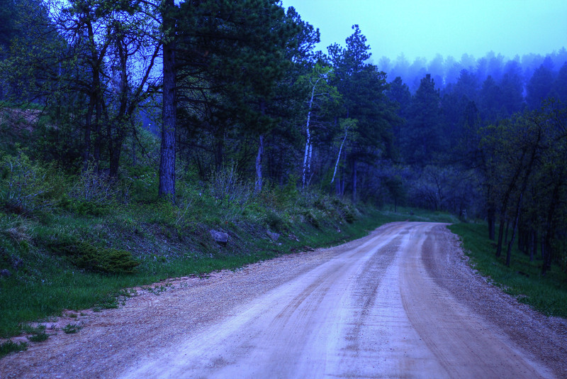 Foggy evening on Tinton Road just outside of Spearfish