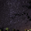 Star trails in Spearfish