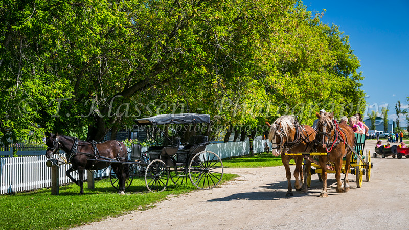 Horse and wagon rides are offered at the Mennonite Heritage Village in Steinbach, Manitoba, Canada.