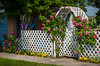 The Villa Del Rosa lattice gate and trellis with roses in Cardinal, Manitoba, Canada.