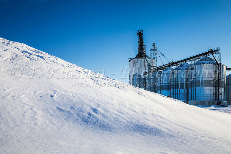 A large pile of wheat covered in snow at the Paterson inland grain terminal at Morris, Manitoba, Canada.