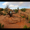 Our hike to the Delicate Arch