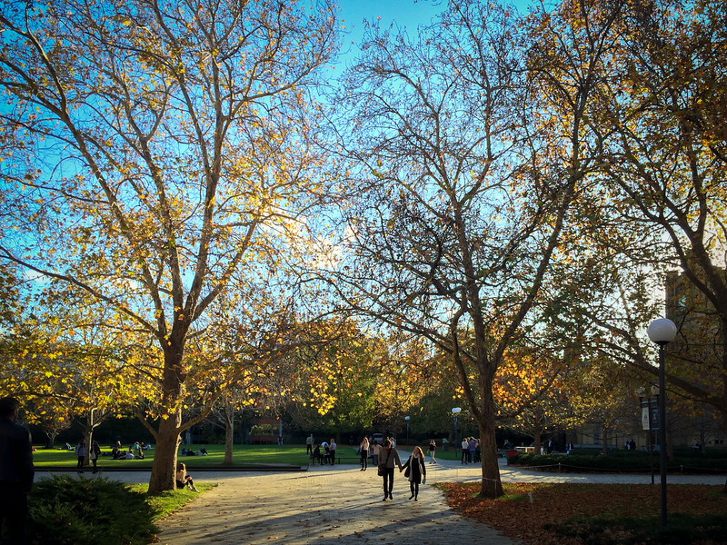 Beautiful day in Autumn at the University of Melbourne