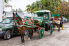 Horse and buggy tours in Cozumel, Mexico.