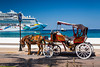 Horse and buggy with Norwegian cruise ships in the port of Cozumel, Mexico.