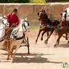 Let the Chariot Races Begin - Jerash, Jordan
