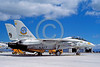 F-14USN-VF-124 0007 A static Grumman F-14 Tomcat USN jet fighter 162589 VF-124 GUNFIGHTERS FIGHTERTOWN USA NAS Moffett 4-1987 military airplane picture by Michael Grove, Sr