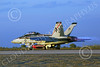 Boeing F-18F-USN 00292 A Boeing F-18F Super Hornet USN 166842 VFA-41 BLACK ACES CAG NG code commanding officer's airplane USS John C Stennis takes-off in afterburner at NAS Fallon 1-2015 military airplane picture by Peter J Mancus