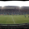 Thorns game pan