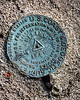 U.S. Coast and Geodetic Survey Marker. Buffalo Mountain, KY, 1950