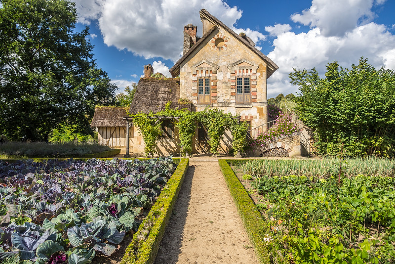 The Cabbage and the Cottage, Versailles