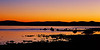 """Mono Lake Sunrise"""