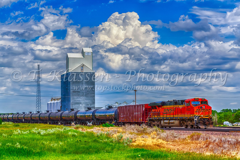 A farm grain elevator and freight train in Brockton, Montana, USA.