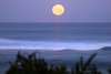 Moonset directly off Sunset Point<br><br>North Shore of O'ahu, Hawai'i  February 20, 2008