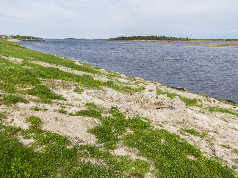 Moose River shoreline in Moosonee looking down river showing ice damage to ground.