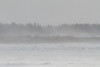 Snow blowing on the Moose River at Moosonee.