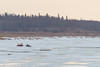 Snowmobile and sled arriving in Moosonee.