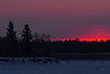 Sky near the south end of Butler Island just before sunrise across from Moosonee.